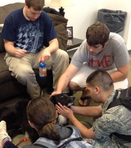 A therapy dog gets some love from students in the week before finals. Photo submitted.