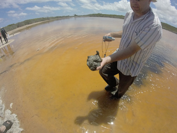 Dr. David Wronkiewicz, associate professor of geosciences and geological and petroleum engineering, holds some organic material pulled from the hypersaline water of Storr's Lake while researching the shallow lake on San Salvador Island.